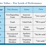 Tribal Leadership: The 5 Stages of Tribes